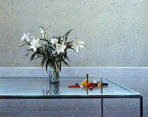 Witte lelies en Bauhaus speelgoed